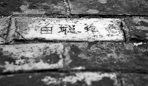 """杨贵妃墓被刻""""白聪玲"""""""