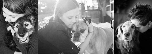 美摄影师拍摄上百位主人告别临死宠物让人心碎