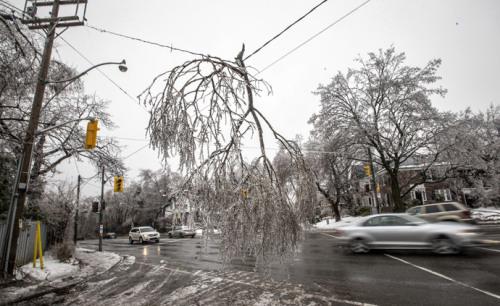 冰暴后,一棵树被挂在了加拿大多伦多市马路中央的电线上。
