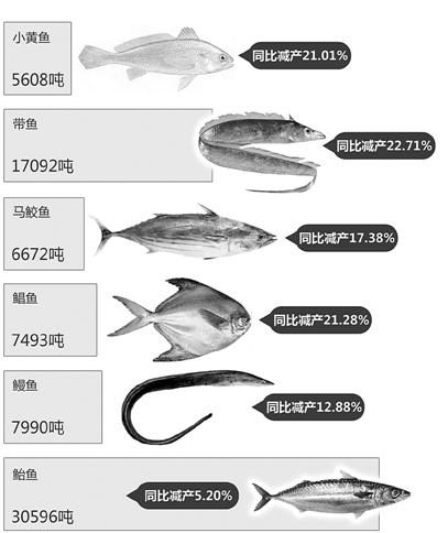 台州市2013年上半年渔业经济运行分析图 制图/林焱挺