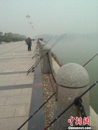 丽水市民像往常一样钓鱼 奚金燕 摄