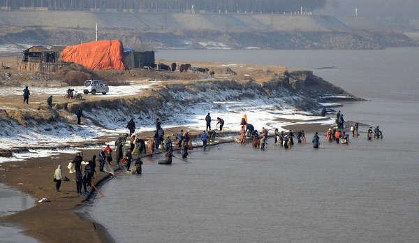济南:市民放生2000斤鲤鱼 50多人下游撒网捕捞(图)