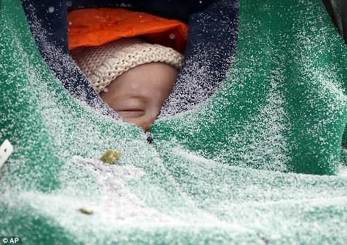 波士顿街头,一个小孩被裹在衣服中。