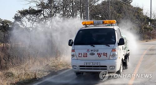 韩国西南部地区再现禽流感疫点增至4个