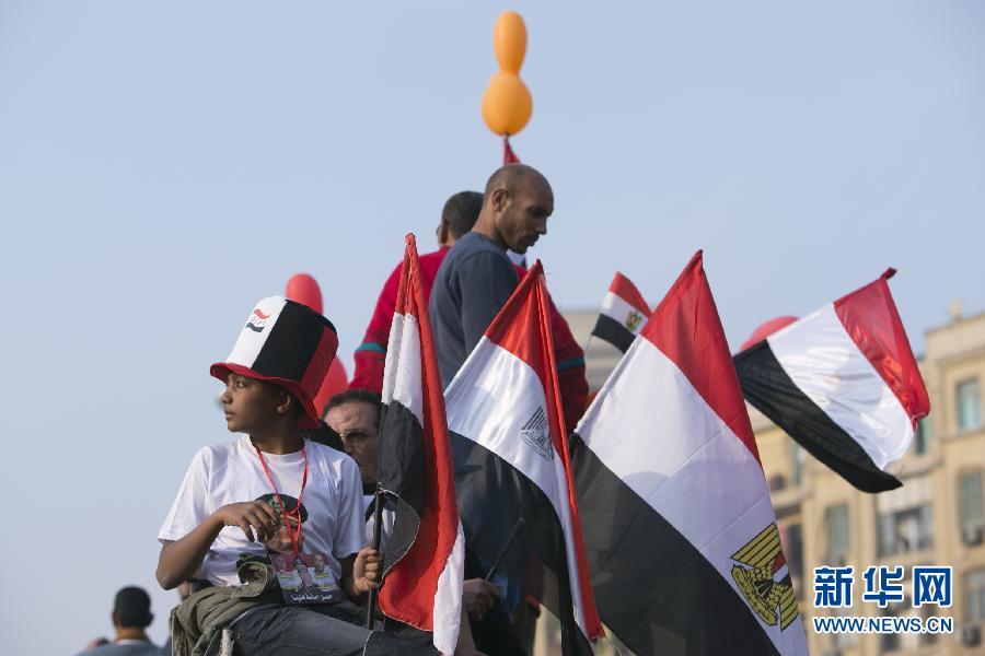(国际)(5)开罗举行集会庆祝推翻穆巴拉克政权三周年
