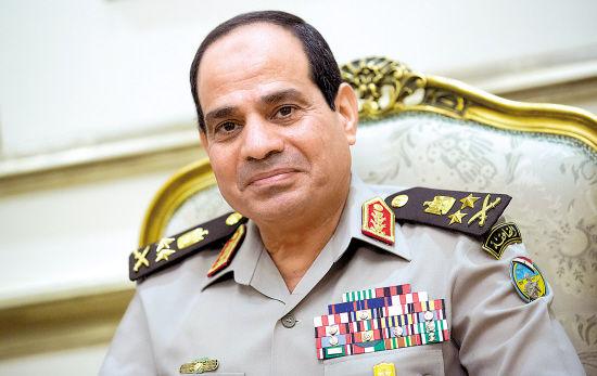 外媒称埃军方或借公投试探民意塞西或参选总统