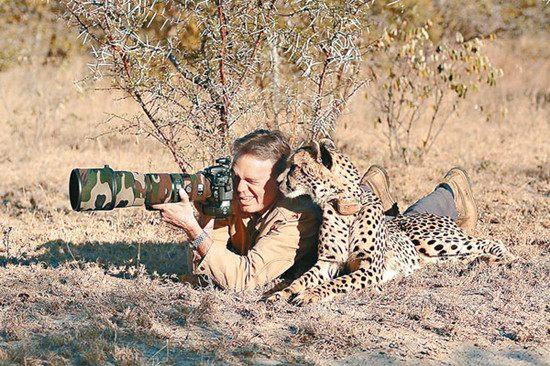 """摄影师非洲拍野生动物被好奇猎豹""""关心""""(图)"""