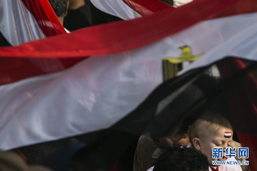 (国际)(7)开罗举行集会庆祝推翻穆巴拉克政权三周年