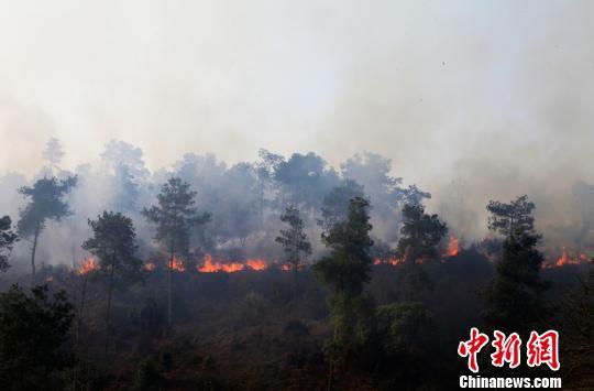 贵州福泉山林火灾5名救火人员遇难身份已确认(图)