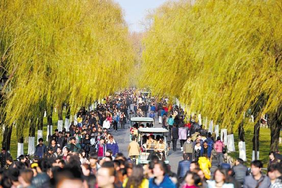 1月1日,杭城和风拂面,阳光普照。走在西湖边,有种如沐春风的感觉。