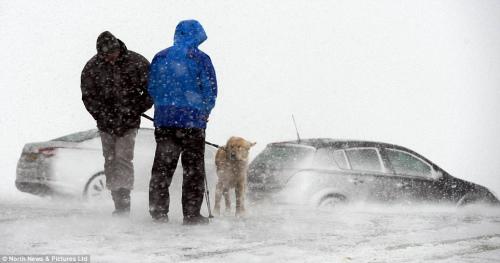 许多汽车因暴风雪袭击停在路上。