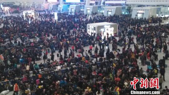 """图为杭州火车东站春运""""早高峰""""现状。 马翔 摄"""