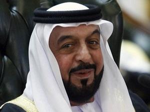 阿联酋总统突发中风接受手术目前情况稳定(图)