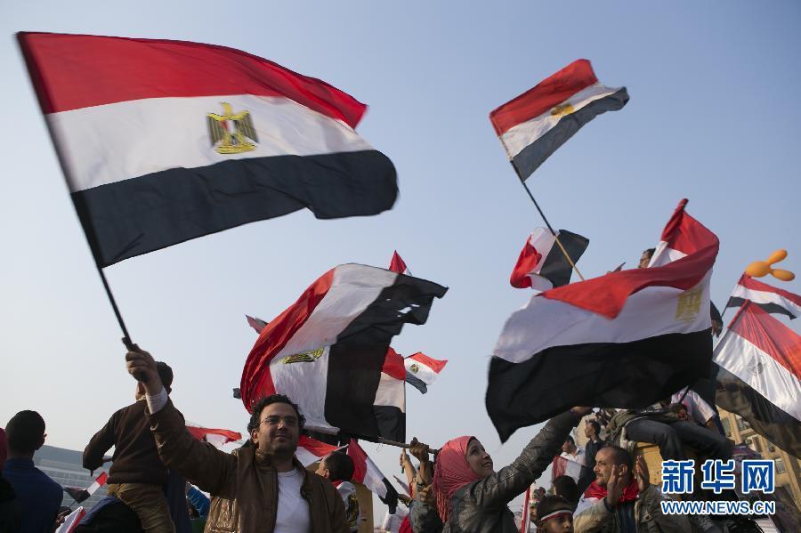 (国际)(8)开罗举行集会庆祝推翻穆巴拉克政权三周年