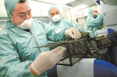 检验检疫工作人员准备实施器械捕鼠。