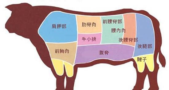 牛的身体被分为9个部分